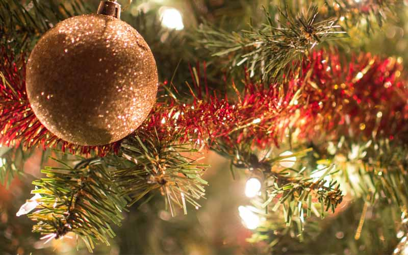 Here You Can Buy Christmas Tree Online India 2020
