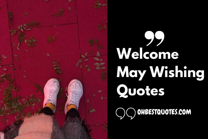 Welcome May Quotes [Hello May Wishing Quotes and Lines] May Be Full Fill With Love